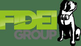 Fidel Group Logo